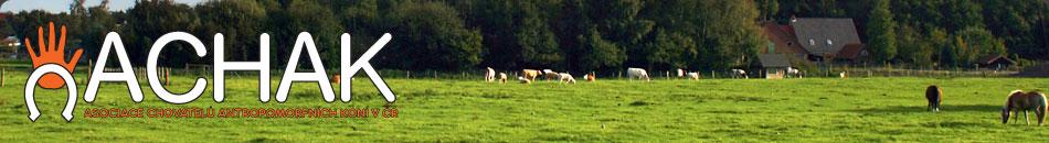ACHAK - Asociace chovatelů antropomorfních koní v ČR